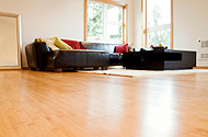 wood floor cleaning and refinishing
